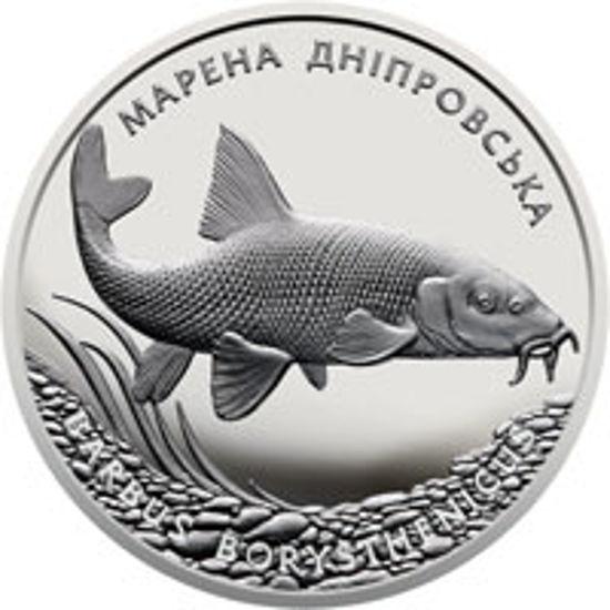 "Picture of Пам'ятна монета ""Марена дніпровська"" (10 гривень)"