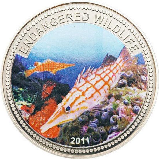 """Picture of Палау 1 долар 2011, """"Длиннорилий кудрепер, Серія """"Дика Природа в небезпеці"""""""