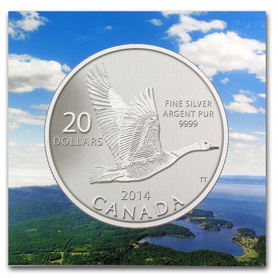 Picture of Канада 20 долларов 2014, Канадский гусь. Серебро 7,96 гр. В буклете