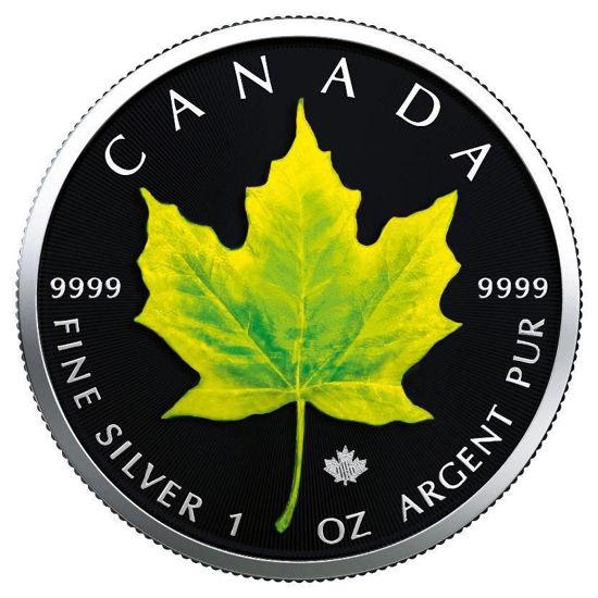 "Picture of  Срібна монета ""Кленовий лист - Літо"" Канада 2019"