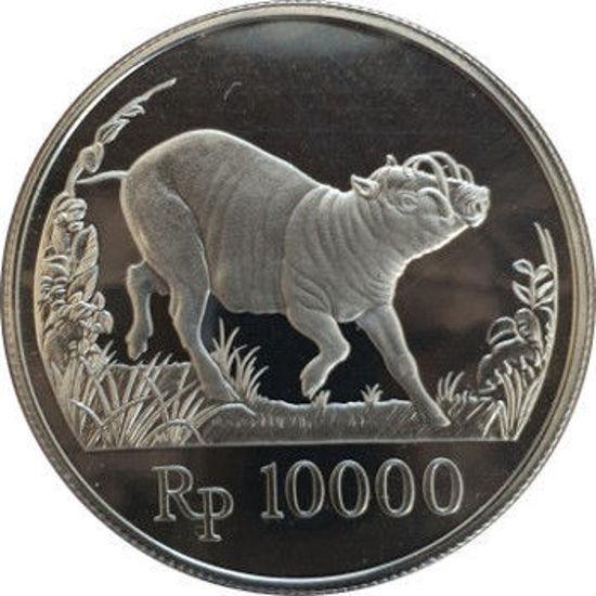 Picture of Індонезія 10000 рупій 1987, Бабирусса. Срібло 19,44 гр.