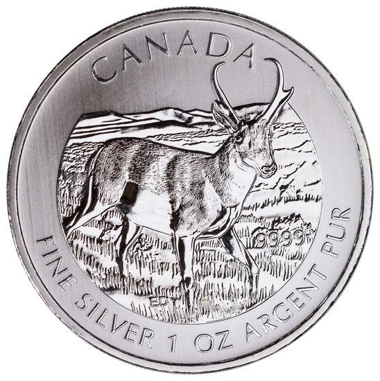 "Picture of Серебряная монета ""Вилорогая антилопа""  2013 г 31,1 г Канада"